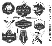 vector set of vintage stickers... | Shutterstock .eps vector #493760617