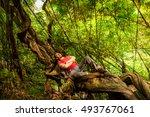 man backpacker traveler... | Shutterstock . vector #493767061