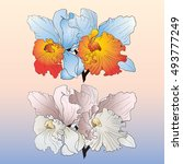 Vector Flower Exotic Orchid. ...