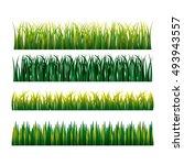 nature grass field background... | Shutterstock .eps vector #493943557