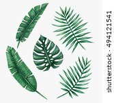 watercolor tropical palm leaves. | Shutterstock . vector #494121541