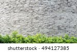 background pattern and texture... | Shutterstock . vector #494127385