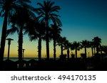 palms | Shutterstock . vector #494170135