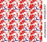 tribal art boho print  vintage... | Shutterstock .eps vector #494281957
