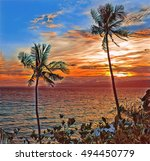 palm trees during sunset.... | Shutterstock . vector #494450779