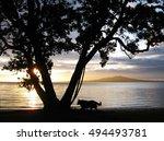 Sunrise Time At Takapuna Beach...