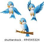blue bird collection set | Shutterstock .eps vector #494545324