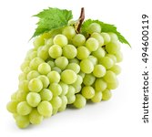 green grape with leaf isolated... | Shutterstock . vector #494600119