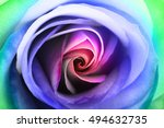 Macro Of Psychedelic Rose Hear...