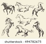 set of hand drawn horses ... | Shutterstock .eps vector #494782675