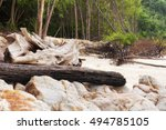 Rocks And Driftwood Washed Up...