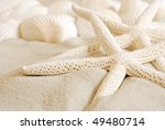 White Finger Starfish And...