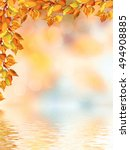 Small photo of autumn landscape with bright colorful foliage. Indian summer.