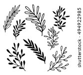 Hand Drawn vintage floral elements. Flower set in vector