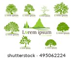 logo of tree collection eco ... | Shutterstock .eps vector #495062224