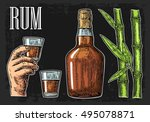 glass and bottle of rum with... | Shutterstock .eps vector #495078871