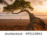Beach At Sunset In Corcovado...