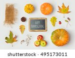 thanksgiving holiday objects... | Shutterstock . vector #495173011