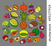 big fruits collection.... | Shutterstock .eps vector #495177919