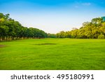 green grass field with tree in... | Shutterstock . vector #495180991