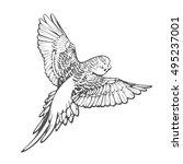 grey parrot vector illustration ... | Shutterstock .eps vector #495237001