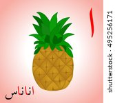 pineapple colored with arabic... | Shutterstock .eps vector #495256171