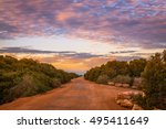 Dirt Road In Rural Australian...