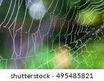Water Droplets On A Spider Web...