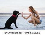 Young Female Training Labrador...