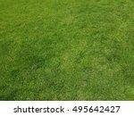 nature green grass field... | Shutterstock . vector #495642427