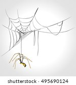 spider and cobweb | Shutterstock .eps vector #495690124