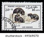 afghanistan   circa 1987  a... | Shutterstock . vector #49569070