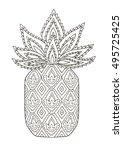 doodle hand drawn pineapple...   Shutterstock .eps vector #495725425