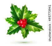 realistic red holly berry and... | Shutterstock .eps vector #495773941