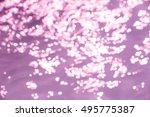 abstract purple bokeh light... | Shutterstock . vector #495775387