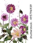 watercolor painting bouquets...   Shutterstock . vector #495796939