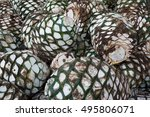 Pineapples Or Agaves Head Pile...