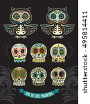 set of day of the dead  a... | Shutterstock .eps vector #495814411