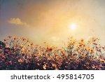 vintage landscape nature... | Shutterstock . vector #495814705