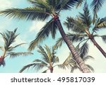 palm trees  vintage effect | Shutterstock . vector #495817039