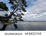 landscape at lake vaettern in... | Shutterstock . vector #495852745