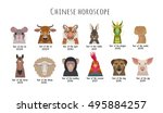 heads  animals of the chinese... | Shutterstock .eps vector #495884257