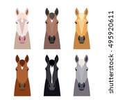 Set Of Head Horse Isolated On...