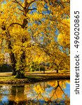 autumn  colors   fall in park... | Shutterstock . vector #496020865