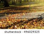 The Wind Picks Up Fallen Leave...