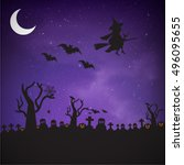 witch flying on a magic... | Shutterstock .eps vector #496095655
