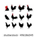 set of vector rooster... | Shutterstock .eps vector #496186345