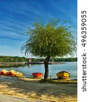 Small photo of big green tree on the sandy shore of the Alum Lake Kamencove jezero in Chomutov with red and yellow boats and pedal boats in the region Ustecky kraj at the end of the summer season in Czech republic