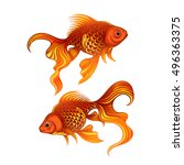 vector color goldfish...