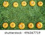 small orange pumpkins on the... | Shutterstock . vector #496367719